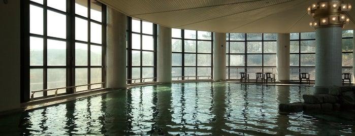 伊豆マリオットホテル修善寺 温泉スパ is one of Lieux qui ont plu à 西院.