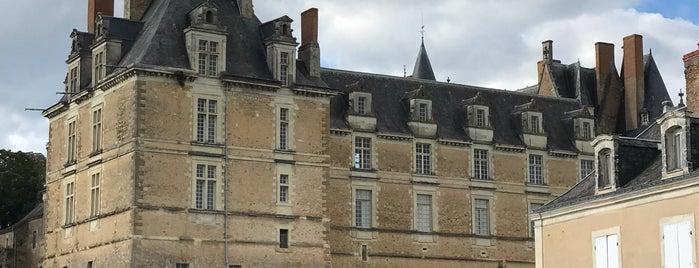 Château de Durtal is one of 100 km 2020.