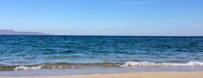 Playa El Sargento is one of Mayte 님이 좋아한 장소.