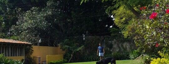 Jardin La Escondida is one of Orte, die Yazmin gefallen.