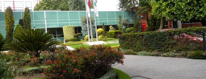 Merck Sharp & Dhome is one of Locais curtidos por TTL.