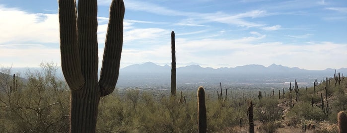 McDowell Sonoran Preserve Gateway Trailhead is one of Arizona.