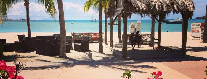 Taloula Mango's Caribbean Café is one of Katrina : понравившиеся места.