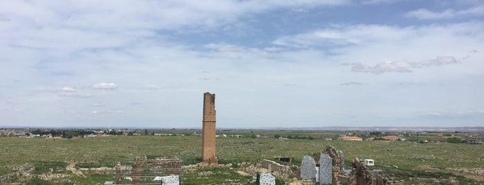 Harran Bayraklı Tepe is one of Locais curtidos por İpek.