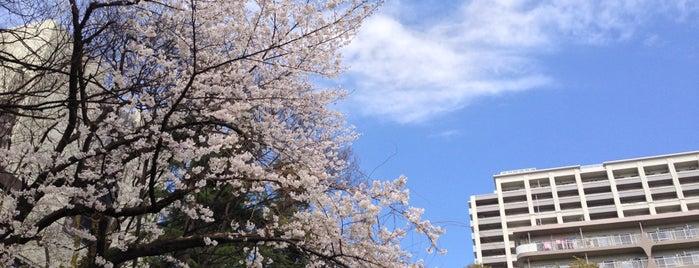 Akabane Park is one of Locais curtidos por Masahiro.