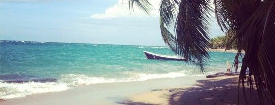 Playa Cocles is one of Locais curtidos por Sunjay.