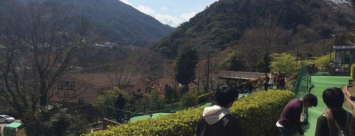 箱根パターゴルフ is one of Katyさんの保存済みスポット.