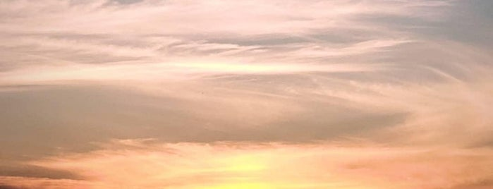 The Sunset is one of Dan : понравившиеся места.