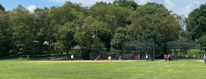 North Meadow Field 9 is one of DINA4NYC.