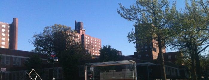 Edenwald Houses - NYCHA is one of Mayorship....