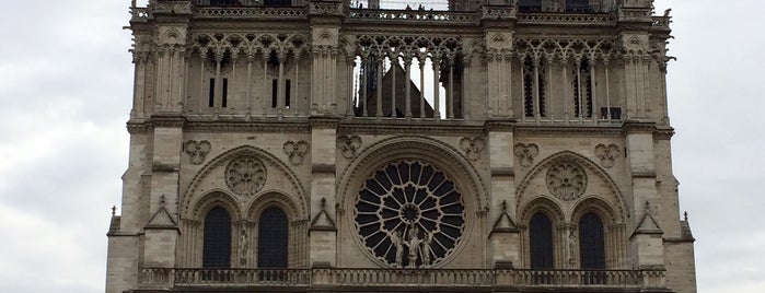 Cattedrale di Notre-Dame is one of PARIS.