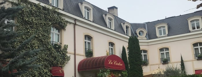 Hostellerie Le Cedre is one of Bons restos !.