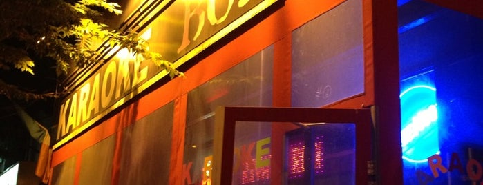 Karaoke Boho Orchard is one of Karoke Bar Venue NY.