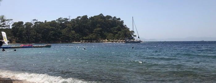 Büyük Boncuklu Koyu is one of Cennet ve İlçeleri.