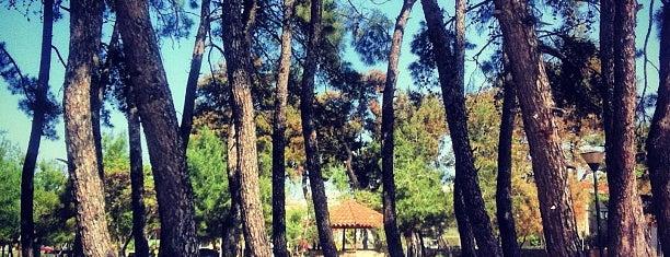 Πάρκο Προσκόπων is one of Posti che sono piaciuti a Mujdat.