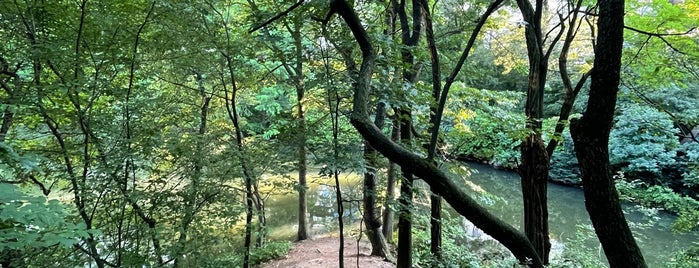 Hallett Nature Sanctuary is one of NYC.