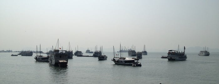 Halong Bay Cruise Pier is one of vietnam.