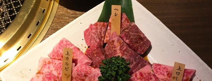 黒毛和牛 焼肉 一 心斎橋店 is one of Japan Point of interest.