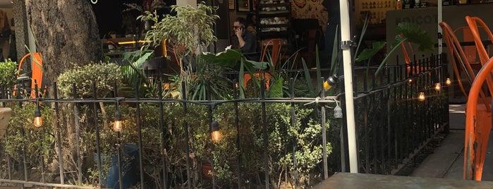Boicot Café is one of México.