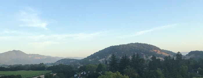 Napa Valley Aloft Balloon Rides is one of San Francisco.