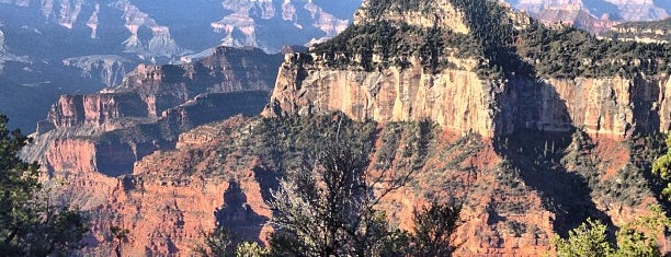 Grand Canyon National Park (North Rim) is one of Darcy: сохраненные места.