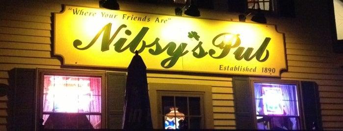 Nibsy's Pub is one of Cuse.
