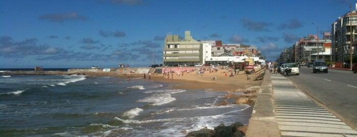 El Emir is one of Punta del Este.