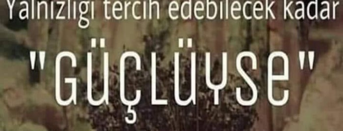 Aysegul: сохраненные места