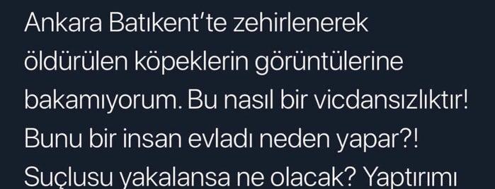 Ada Veteriner Polikliniği is one of Locais curtidos por Emre.
