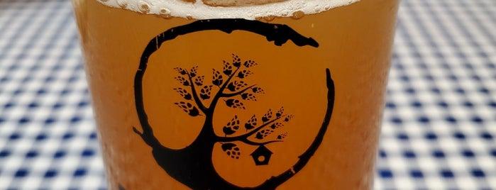 Backyard Brewery is one of Lieux qui ont plu à David.