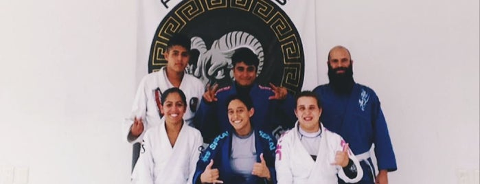 Promahos BJJ is one of CDMX deporte.