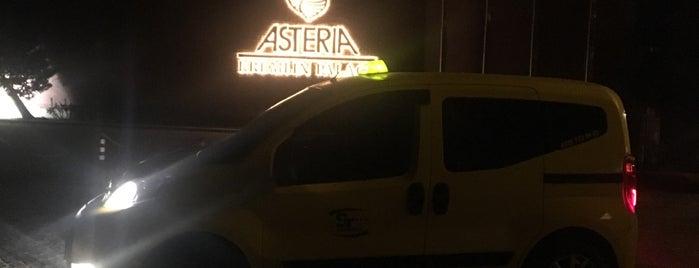 Asteria Kremlin Palace is one of Locais curtidos por Ilknur ★.