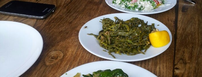 Kaplan Dağ Restaurant is one of SERKAN IN GİTTİĞİ MEKANLAR.