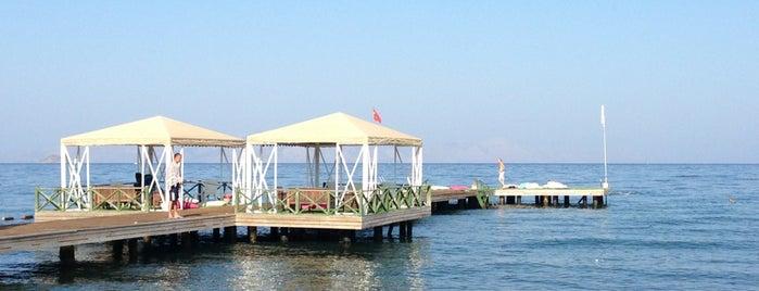 Avta Beach is one of Bodrum Deniz.
