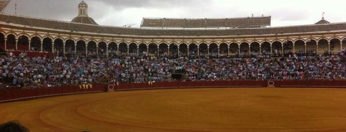 Plaza de Toros de la Maestranza is one of Favorite Places Around the World.