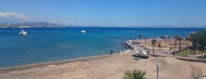Altınkum Plajı is one of themaraton.
