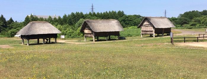 Sannai-Maruyama Ruins is one of Lieux qui ont plu à 2.