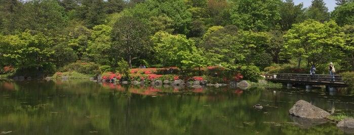 昭和記念公園 日本庭園 is one of Lieux qui ont plu à 2.