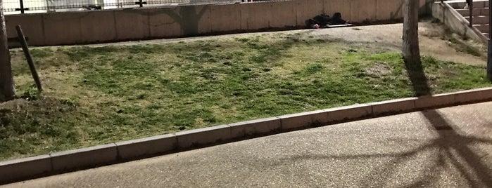原池公園スケートボードパーク is one of R_list.