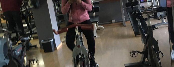 Spazio Gym & Fitness is one of Orte, die Karina gefallen.
