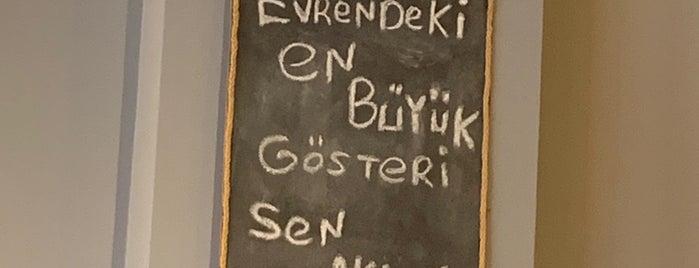 Freud is one of Bir Gün Mutlaka.