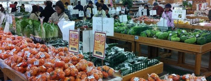 JAセレサ川崎 ファーマーズマーケット セレサモス 麻生店 is one of 黒川駅 | おきゃくやマップ.