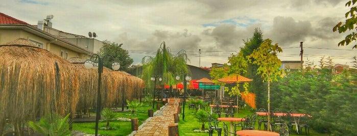 Trevi Bahçe is one of สถานที่ที่บันทึกไว้ของ Dr.Emrullah.