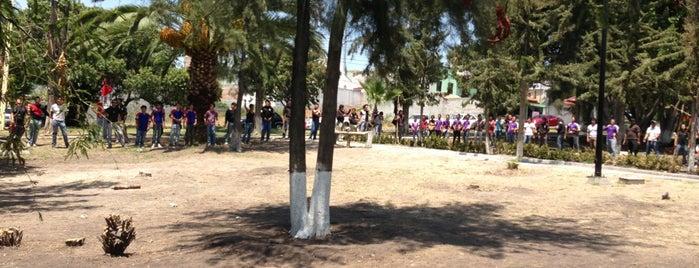 Jardin de Tejeda is one of Tempat yang Disukai Jose.