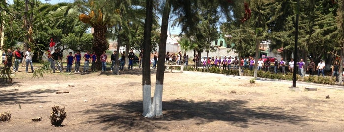 Jardin de Tejeda is one of Posti che sono piaciuti a Jose.