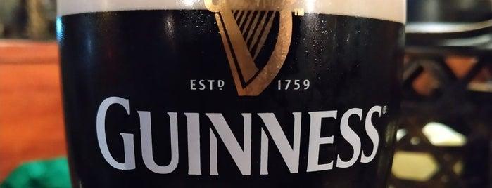 The Dubliner Irish Pub & Restaurant is one of GUIRIS RESTAURANTS IN TARRAGONA'S LAND.