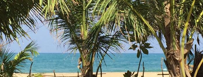 Arugam Beach is one of Orte, die Georg gefallen.