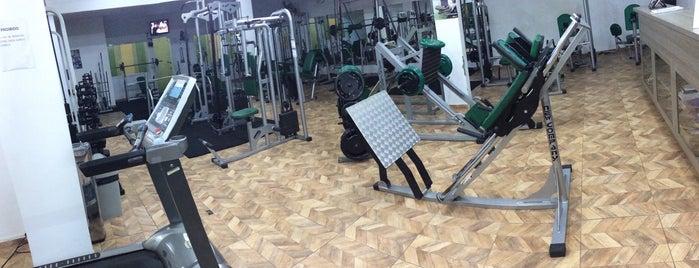 Academia Movimento Fitness is one of Posti che sono piaciuti a Diego.