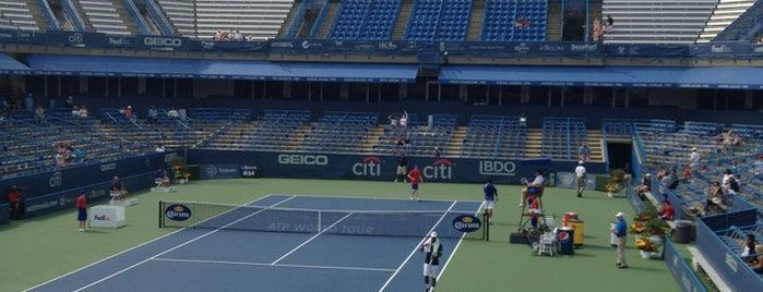 William H.G. Fitzgerald Tennis Stadium is one of Ricardoさんのお気に入りスポット.