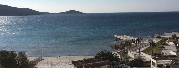 Design Plus Seya Beach Hotel is one of สถานที่ที่ Veysel ถูกใจ.